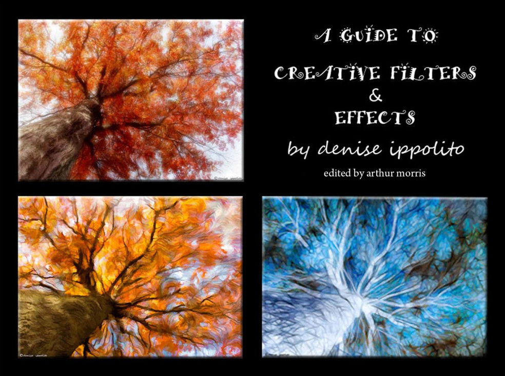 A Guide To Creative Filters And Effects By Denise Ippolito