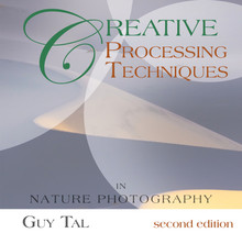 Creative Processing Techniques in Nature Photography eBook by Guy Tal