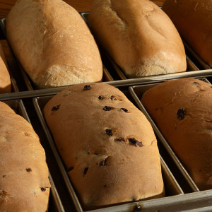 Soft, light and buttery, our breads are baked fresh daily and shipped the same day they are made. Specialty breads include Cinnamon Raisin, Rye and Pumpernickel Rye.  Comes in packs of two 16oz loaves.