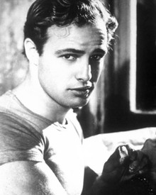 Marlon Brando in A Streetcar Named Desire aka Un Tramway Nomme Desir Poster and Photo