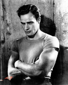 Marlon Brando in A Streetcar Named Desire a.k.a. Un Tramway Nomme Desir Poster and Photo