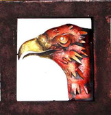 Eagle Head Framed