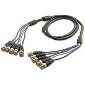 6' 5 BNC/M to 5 BNC/M Cable