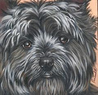 "Cairn Terrier Face 6"" Tile"