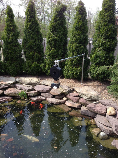 KSF-2XL koi pond fish feeder with low voltage programmable timer and 50' wire (12V battery not included)