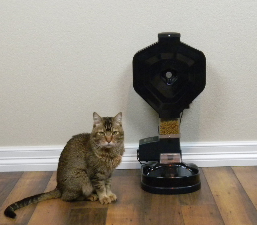 CSF-3XL cat super feeder with stand/bowl, analog timer, 1.5 gallon hopper (24 cups capacity) and all hardware.