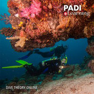 Dive Theory Online eLearning Code