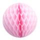 Light Pink Tissue Paper Honeycomb Ball Pom Pom Decoration for Princess Parties