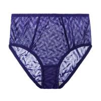 Vega High Waisted Panty