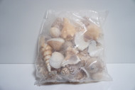 Assorted Sea Shell Pack (2 Pound Bag)