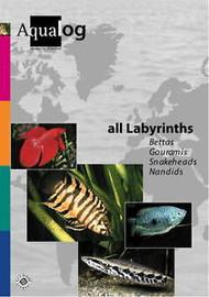 Aqualog - All Labyrinths