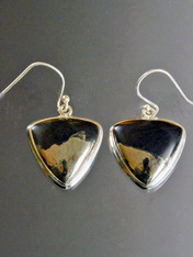 Pyrite In Magnetite - Healer's Gold & Black Onyx Sterling Silver Earrings - ONE OF A KIND