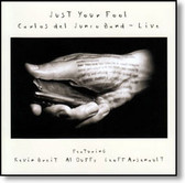 Carlos del Junco Band - Just Your Fool