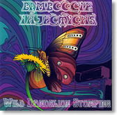 """""""Wild Dandelion Stomping"""" surf CD by Bamboogie Injections"""
