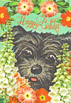 """""""Black Nose"""" Scottie Birthday Card"""