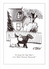New Yorker Scottie Cartoon Card