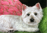 "Westie "" Daydreaming"" Card"