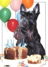 """Scottie """"Add Another Year"""" Card"""