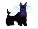 Contemporary Scottie Sympathy Card