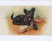 """Scottie and Pink Slippers"" Note Cards"