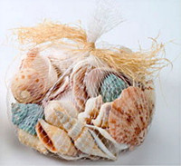 150 Grams Sea Shells in Net