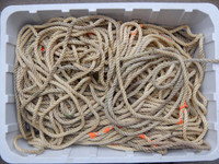 Popular Used Decorating Rope