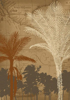 Bermuda Shade High Quality Rugs