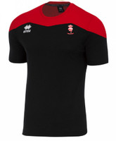 Lincoln City, Kids Travel Shirt 2017/18 by Errea. Available now from Andreas Carter Sports.