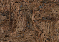 Candice Olson Dimensional Surfaces Cork on Metallic Wallpaper CX1201 by York