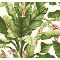 Tropics Banana Leaf AT7067 Wallpaper