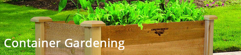 container-gardening-planter.png