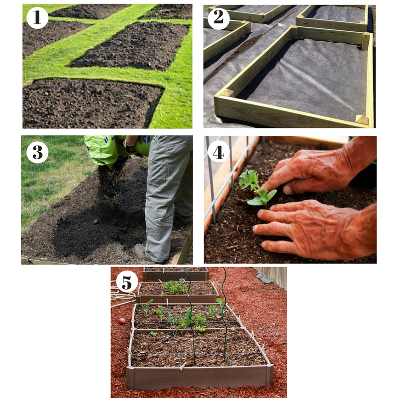 Build A Raised Bed Garden: The Ultimate Guide