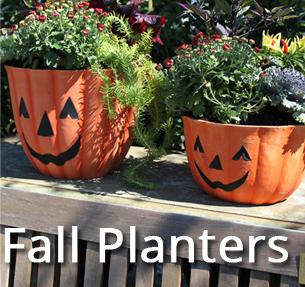 Fall Decor Pumpkin Planter