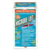 Eco Labs 10PLQ Microbe Lift PL Bacteria for Watergardens Quart