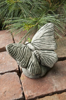 Campania Stone butterfly statue.