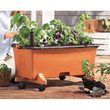Earthbox Organic Growing Kit