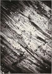 Kathy Ireland Illusion Ivory/Grey Area Rug by Nourison