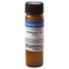 Rhus Tox Homeopathic Remedy