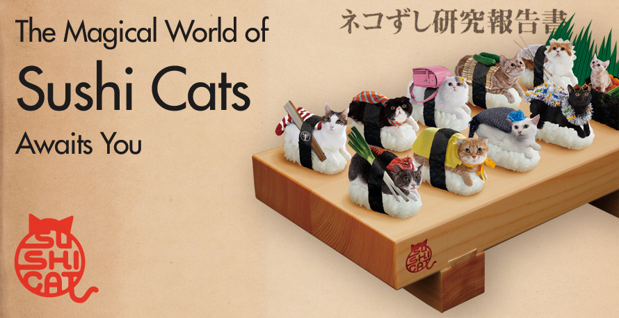 The Magical World of Sushi Cats Awaits You