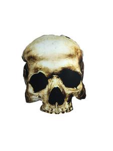Go Rocker - Skull Throw Pillow
