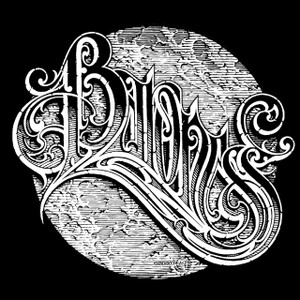 "Baroness - Logo 5x5"" Printed Sticker"