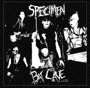 "Specimen - Bat Cave 4x4"" Printed Patch"