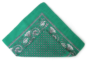 Classic Pattern Bandana - Green