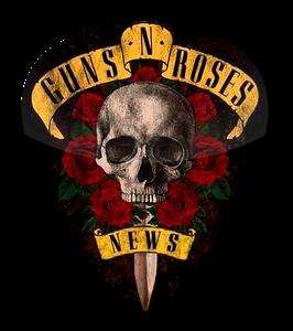 Guns N Roses - News Standard Guitar Pick