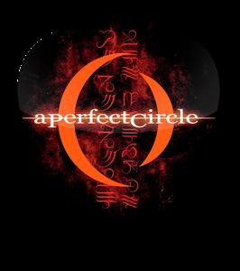 A Perfect Circle Standard Guitar Pick