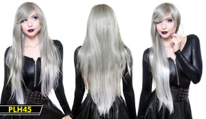 Silver Extra Long Wig