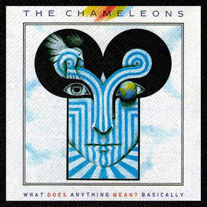 "The Chameleons - What Does Anything Mean? 4x4"" Color Patch"