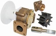 Pump Brz Head Kit 22880