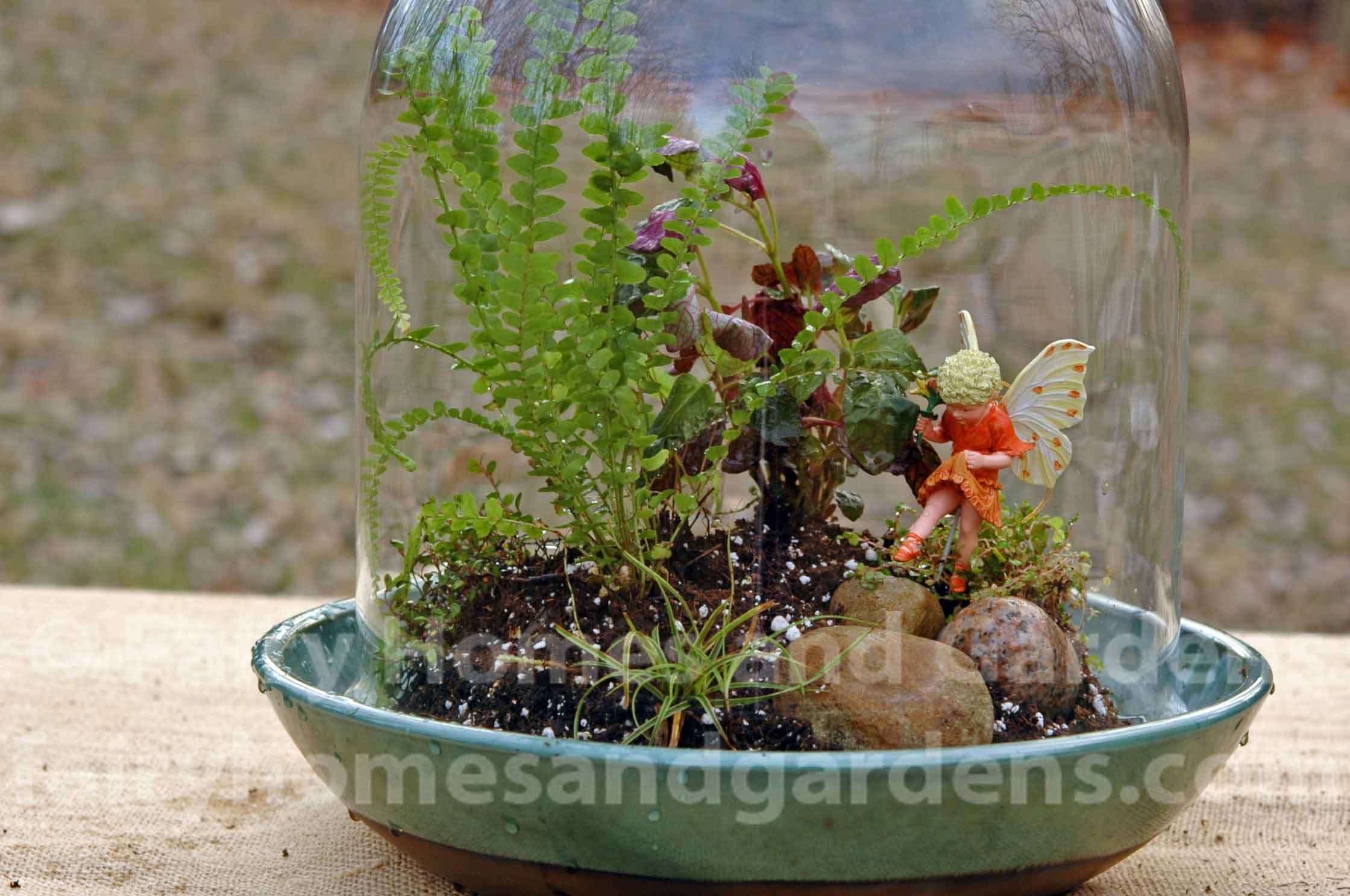fairy-terrarium-in-glass-cloche.jpg