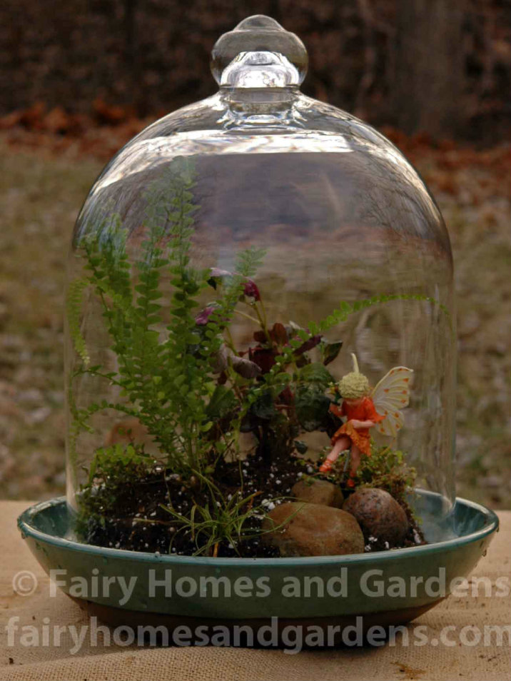 Fairy Terrarium Tutorial Fairy Homes and Gardens